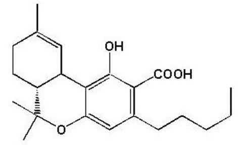 9-THCA – The Medicinal Component of Marijuana – Aphios – Aphios