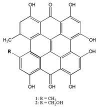 Hypericin Structure